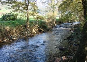 Chantier_rivière